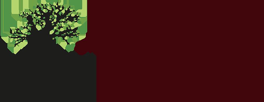 Osteopaat Nijmegen